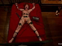 Brooklyn Lee & Bobbi Starr in Fiery Redhead Brooklyn Is Back For Electro Lezdom Bdsm - Electrosluts